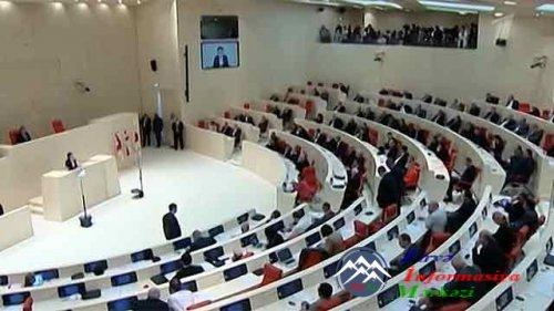 В парламенте Грузии азербайджанцы дали бой армянам - Видео