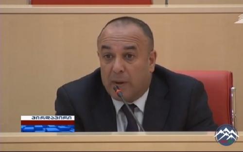 Gürcüstan parlamentinin üzvü:
