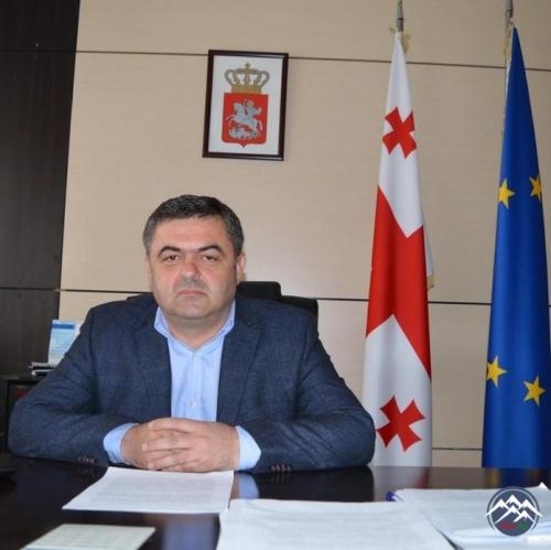 Davit Şerazadaşvili 85.41 % səslə Bolnisi şəhərinin meri olub