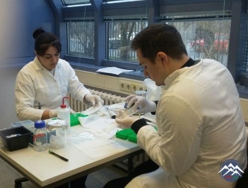 Botanika İnstitutunun doktorantı Almaniyada molekulyar sistematika üzrə təl ...
