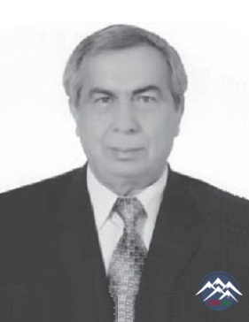 Professor Nizami HƏSƏNLİ (1941)